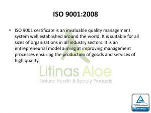 9001-EN copy